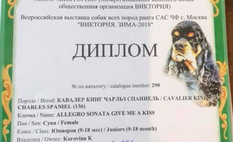 All-Russian Dog Show